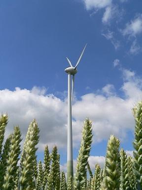 windenergie akkerland